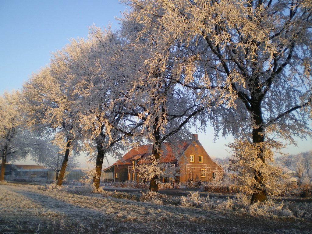 peelberg-4-peelberg-in-winter