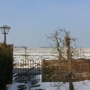 Uit de wind, winter weiland