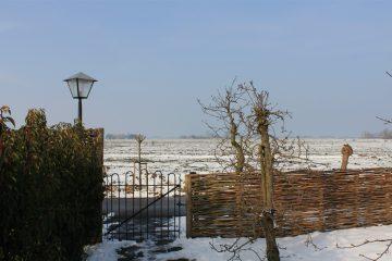 Uit de wind, winter weiland