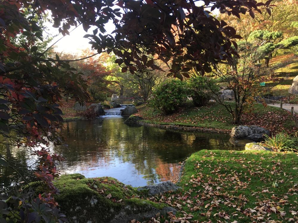 Hasselt, Japanse tuin