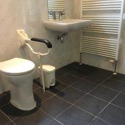 Rolstoeltoegankelijk Chalet Zuid Limburg, badkamer met toilet en wastafel