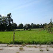 Klein Hoolhorst, rondom weilandenKlein Hoolhorst, rondom weilanden