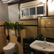 Honswijck, rolstoeltoegankelijk badkamer, toilet en wastafel