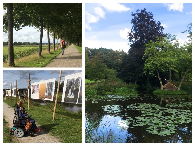 collage van foto's in Oranjewoud, Eelke kijkt foto's op doeken bij museum Belvedere, Tjeerd wandelt over een lange laan met bomen