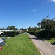 smalle weg met links en rechts grasvelden met hagen er tussen en een tent