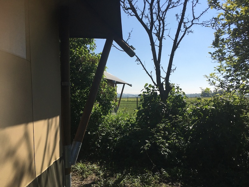 Mooi doorkijkje met tentdoekk op de voorgrond en uitzicht op een weiland